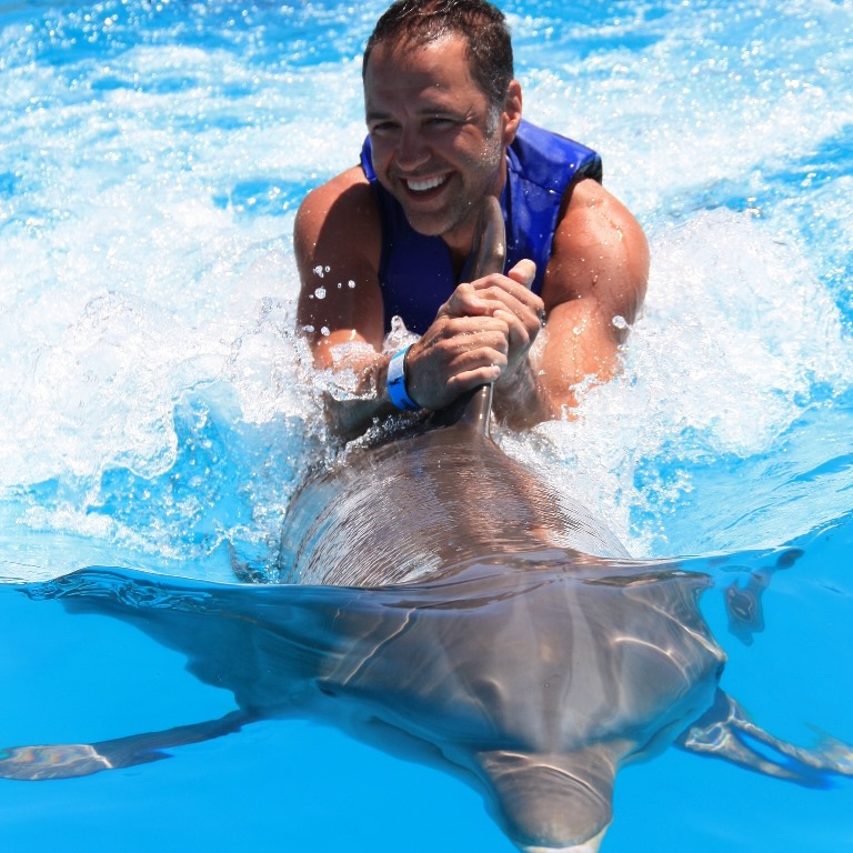 Dolphin Signature Swim in Los Cabos